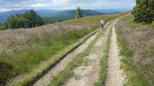 Ścieżka na Mogielicę