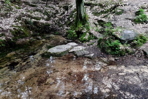 Źródło rzeki Kamienna