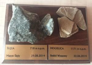Kamienie ze Ślęży i Mogielicy