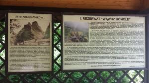 Rezerwat Homole
