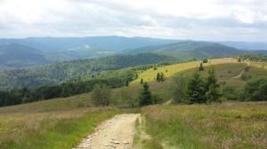 Widok ze ścieżki na Mogielicę