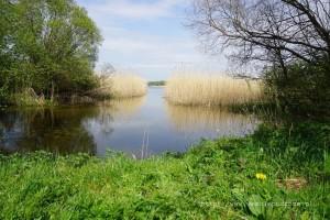 Wypływ Gwdy z jeziora Wierzchowo